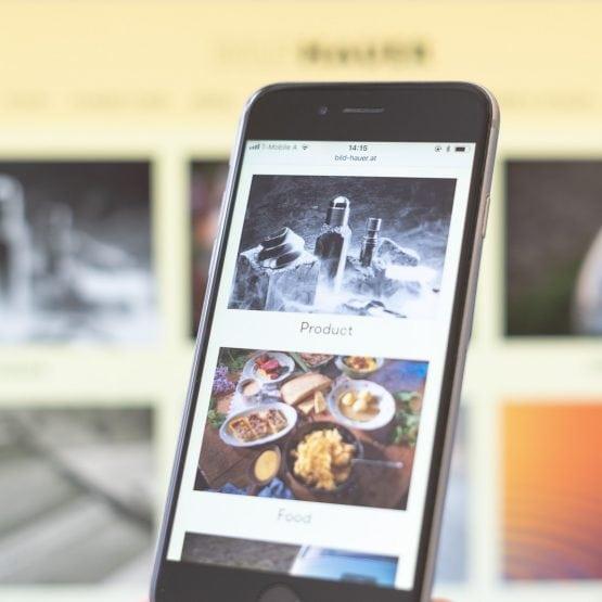 Wordpress Portfolio Bild-hauer.at